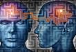 huperzine A for memory enhancement